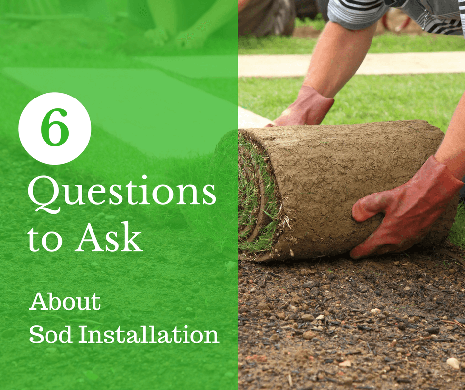 When You Need A Flawless Lawn Quickly And Painlessly, Thereu0027s No Better  Solution Than Sod Installation. To Narrow Down The Options, Collect Quotes  From A ...